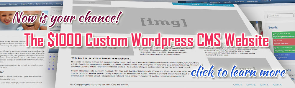 $1000 Custom Wordpress Website